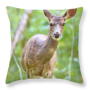 Olympic Doe Throw Pillow