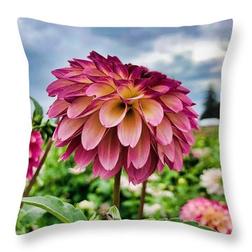 Throw Pillow featuring the photograph Ominous Sky by Brian Eberly