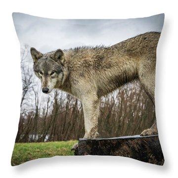 On A Slant Throw Pillow