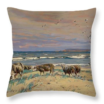 On The Baltic Sea Beach Throw Pillow
