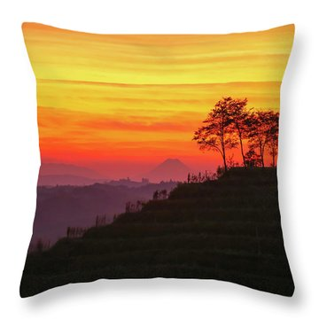 On The Viewpoint Throw Pillow