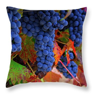 On The Vine II Throw Pillow