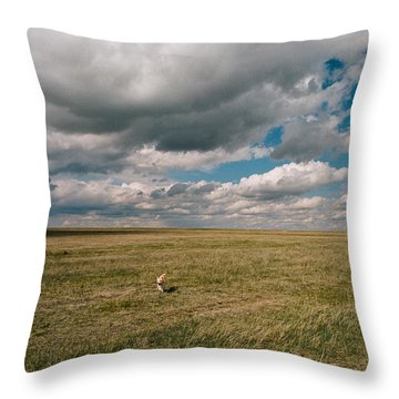 Throw Pillow featuring the photograph One Happy Dog by Carl Young