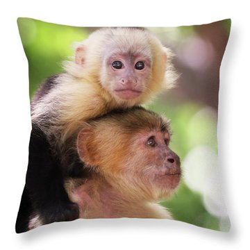 One Of Those Days When You Just Can't Seem To Get The Monkey Off Your Back Throw Pillow