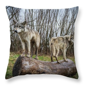 Opposite Ends Throw Pillow