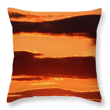 Throw Pillow featuring the photograph Orange And Black by William Selander