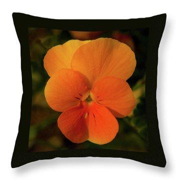 Orange Cream Throw Pillow