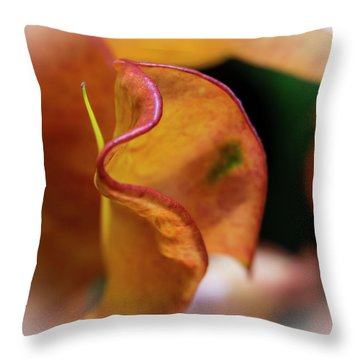 Orange Croton Throw Pillow