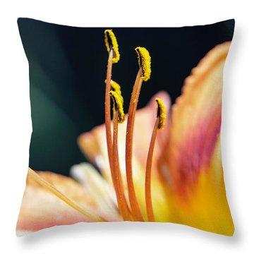 Orange Day Lily Stamen Throw Pillow