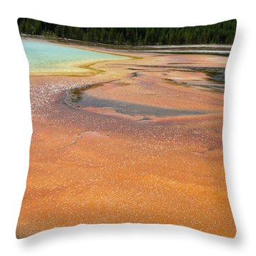 Orange River Throw Pillow