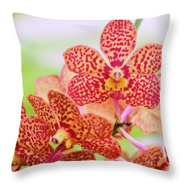Orange Spotted Orchids Throw Pillow