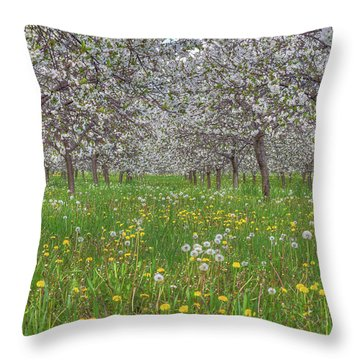 Throw Pillow featuring the photograph Orchard Blooms by Paul Schultz