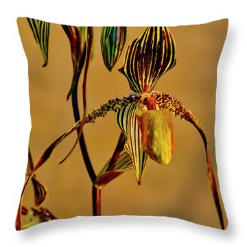 Orchid Study Eight Throw Pillow