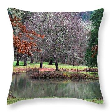 Oregon Winter Day Throw Pillow