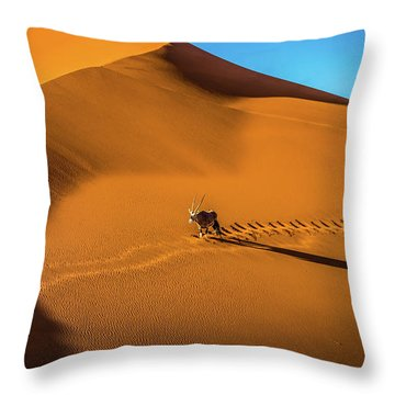 Oryx Crossing Big Daddy Dune, Sossusvlei, Namibia Throw Pillow