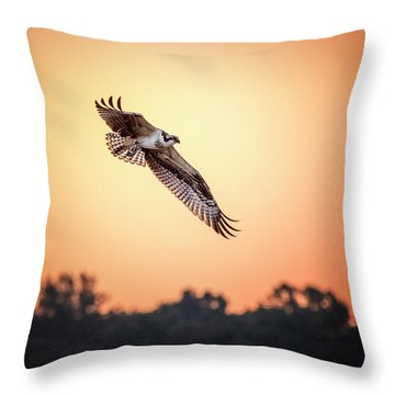 Osprey At Sunrise Throw Pillow