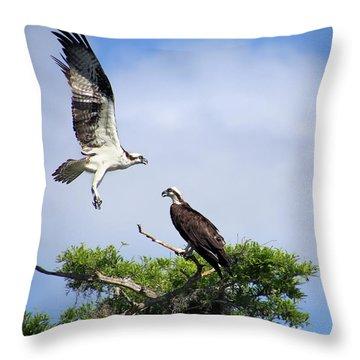 Ospreys At Blue Cypress Lake Throw Pillow