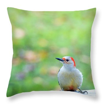 Throw Pillow featuring the photograph Our First Red-bellied by Onyonet  Photo Studios