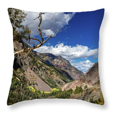 Ouray Overlook Throw Pillow