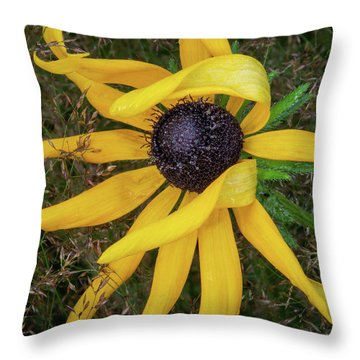 Throw Pillow featuring the photograph Out Of The Ordinary by Dale Kincaid