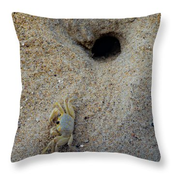 Throw Pillow featuring the photograph Outer Banks Ghost Crab by Lora J Wilson