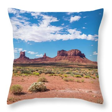 Outside The Park Throw Pillow