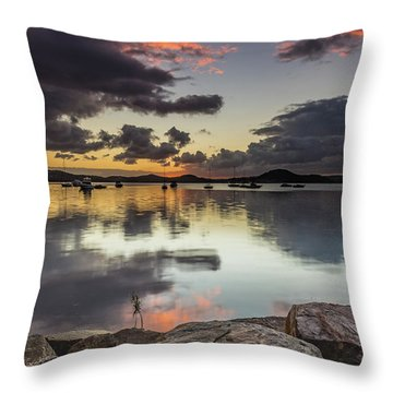 Overcast Waterscape With Hints Of Colour Throw Pillow