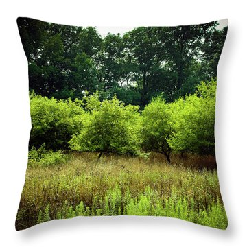 Throw Pillow featuring the photograph Overgrown by Michelle Wermuth