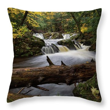 Overlooked Falls 1 Throw Pillow