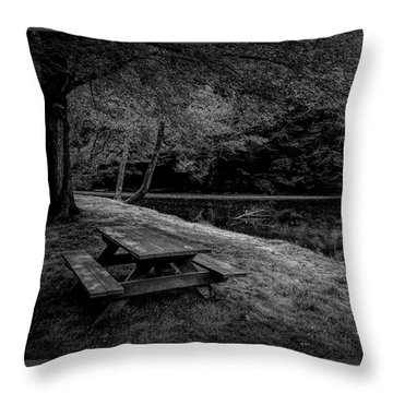 Overlooking The Sugar River Throw Pillow