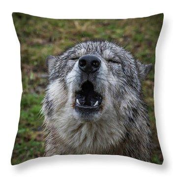 Owwwwwwwwwww Throw Pillow