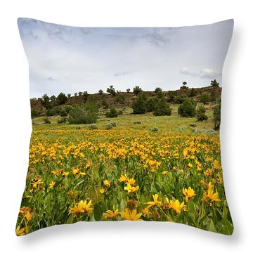 Owyhee Uplands Throw Pillow