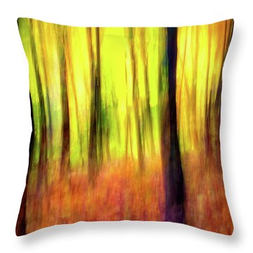 Ozark Autumn Blaze Throw Pillow