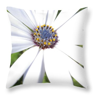 Page 13 From The Book, Peace In The Present Moment. Daisy Brilliance Throw Pillow