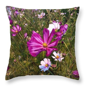 Throw Pillow featuring the photograph Painted Cosmos by Brian Eberly