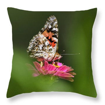 Throw Pillow featuring the photograph Painted Lady Butterfly At Rest by Christina Rollo