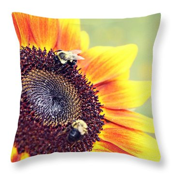 Throw Pillow featuring the photograph Painted Sun by Candice Trimble