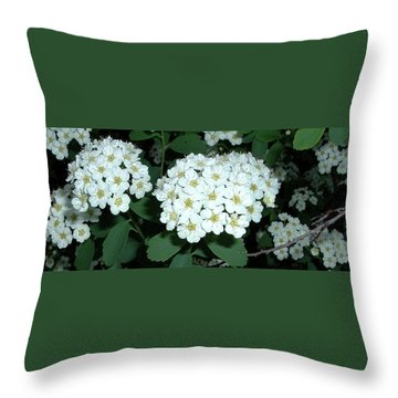 Throw Pillow featuring the photograph Pale Evening by Belinda Landtroop