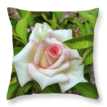 Pale Rose Throw Pillow