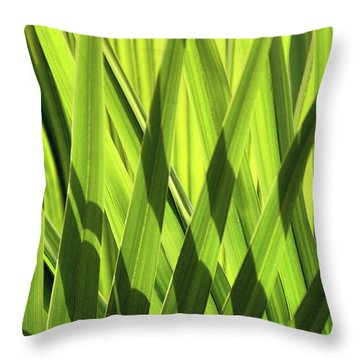 Throw Pillow featuring the photograph Palm Portrait IIi by Leda Robertson
