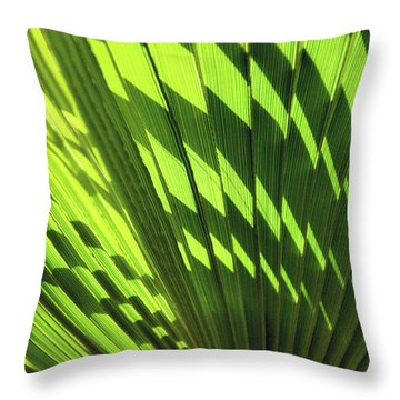 Throw Pillow featuring the photograph Palm Portrait Iv by Leda Robertson