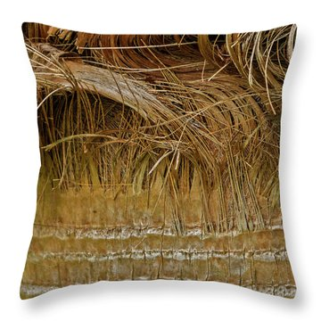 Palm Tree Straw 2 Throw Pillow