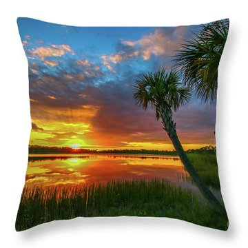 Throw Pillow featuring the photograph Palm Tree Sunset by Tom Claud