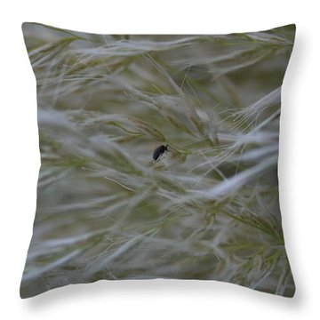 Pampas Grass And Insect Throw Pillow