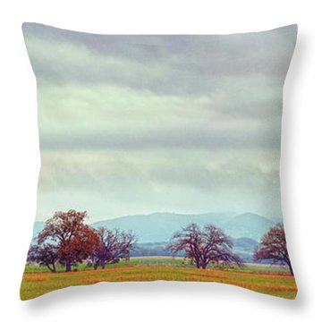 Panorama Of Lone Oaks Standing In A Prairie - Uvalde County Utopia Texas Hill Country Throw Pillow