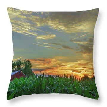 Panoramic Cornfield Sunset Throw Pillow