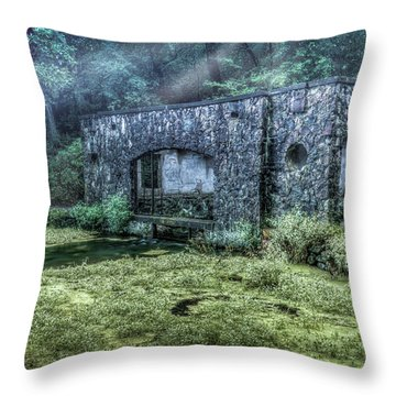 Paradise Springs Throw Pillow