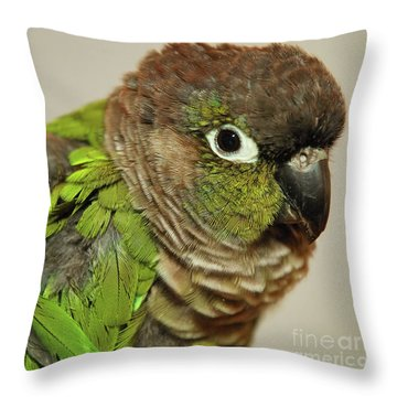 Throw Pillow featuring the photograph Parker by Debbie Stahre