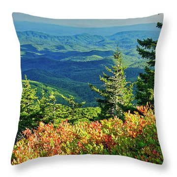 Parkway Tree Throw Pillow