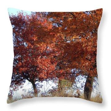 Passing Autumn Throw Pillow